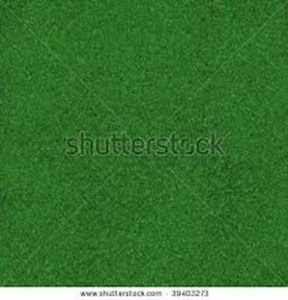 Picture of Garden Party Astro Turf, Green
